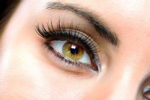Ricin pour les cils et sourcils